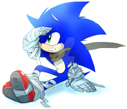 +SONIC BOOM!+ by andreahedgehog