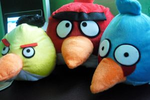 angry birds by xeane21