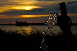 water of sunset by dnyphotography23