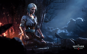 Ciri Meditating - The Witcher 3: Wild Hunt by WojciechFus