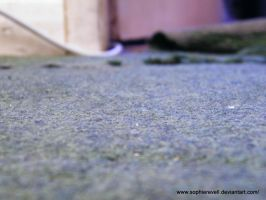Carpet by sophierevell