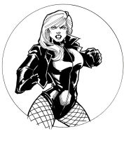DC Hotties: Black Canary by guinnessyde