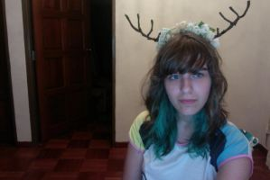 DIY antler and flower crown! by TerouFluffy