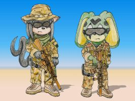 Navy SEALs in the desert by RyanEchidnaSEAL
