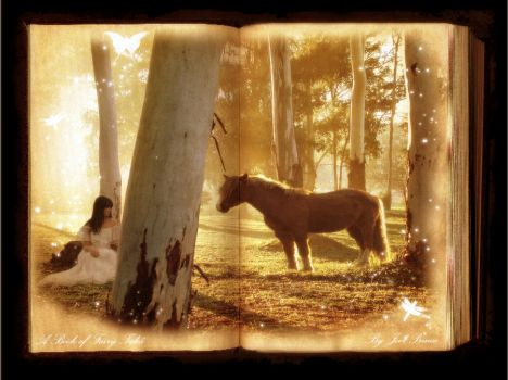 A Book of Fairy Tales by Prince-Photography