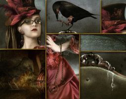 The Raven close up by Toefje-Kunst