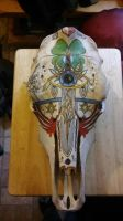 cow skull in progress by knight-of-rosubia