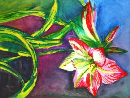 Flower painting by Zallira