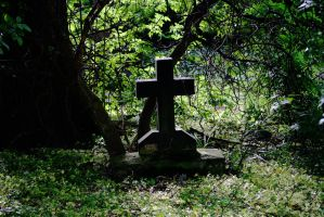 grave yard stock 5 by rustymermaid-stock