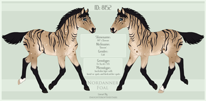 8152 Nordanner Foal by SWC-arpg