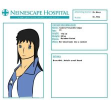 Neinescape Patient Sheet Chile by Panzaeron