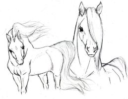Magic Horses Sketsh by Arabis-Wild-Horses