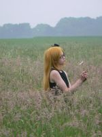 where have all the flowers gone? by acryl-no-akasuna