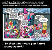 Amy-hater logic........BROKEN by XEver-Blue-ZoneCopX