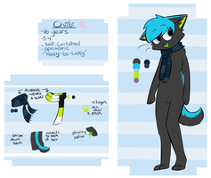 Chiibi Reference Sheet 2013 by Chiiboo