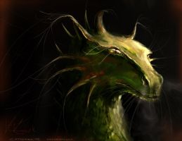 Dragon by Catherine-PL