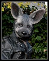Striped Hyena Mask by BlueHyena