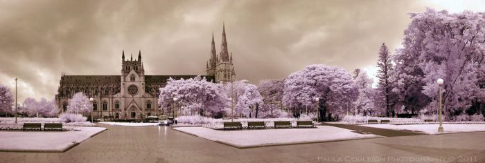 St Mary's Cathedral - Infrared by La-Vita-a-Bella