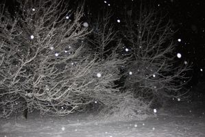 Winter at night 2 by klbryanphotography