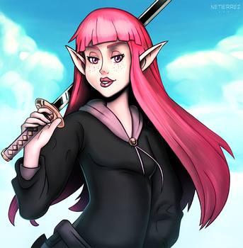 Elf Swordsman Girl by Netierrez