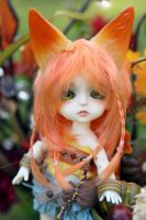 Fall Shoot: Pretty Fox-y by Azyntil