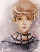 LuHan-EXO-M by jine00