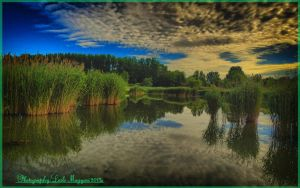 Hungarian landscapes.HDR-picture(photo series)26. by magyarilaszlo