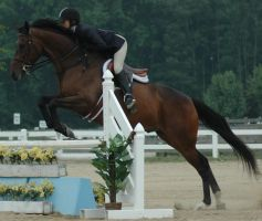 jump 7 by stockhorse