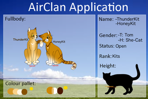 AirClan Kits - ThunderKit and honeyKit by Wolf3Animations
