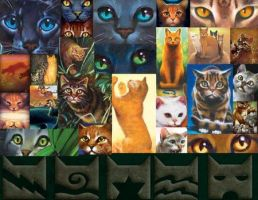 Warrior Cats by janemalty