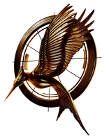The Hunger Games Catching Fire by Cristhal17