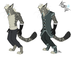 KyroClothes by cobu96