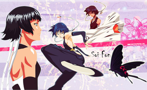 Soi Fon wallpaper by Ishily
