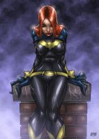 Batgaze - Barbara Gordon Version by richmbailey