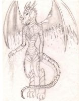 Dragon outline ^^ by Wildlioness3