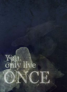 You only live once by BurritoFace