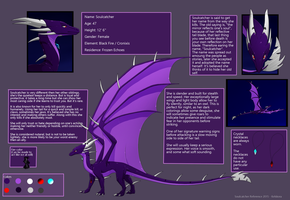 Soulcatcher Reference Sheet 2015 by Kelskora