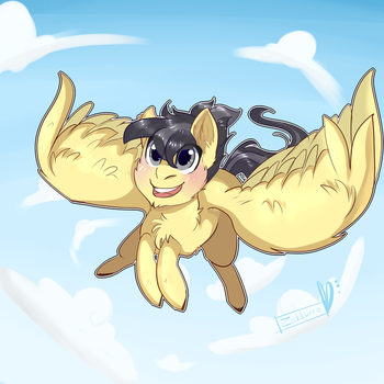 Joy of flight -com- by Zakkurro