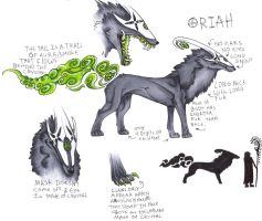 Oriah Ref by CandyShark