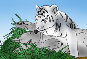 Wolf and Tiger-little by NarutoFan-EmKa-sama