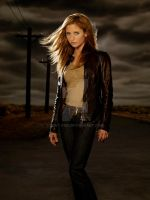 Buffy the vampire slayer by Lost-Fan