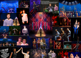 Pippin Collage by amanmangor