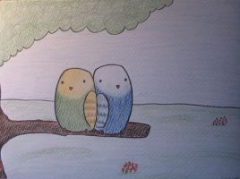 budgies by parkiet
