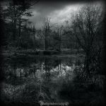 La mare aux fees II by CountessBloody
