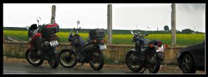 3 bikes by raven30hell