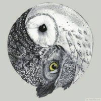 Yin Yang Owls by ImALlamaBeJelly