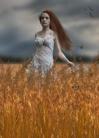 Fields Of Gold.. by Alz-Stock-and-Art