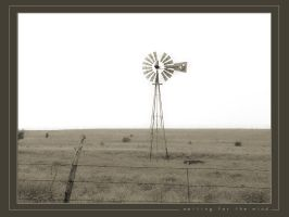 Waiting for the Wind V2 by cbpics