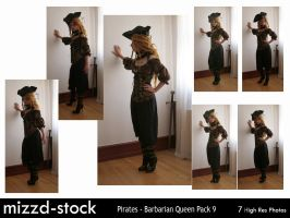 Pirates - Barbarian Queen Pack 9 by mizzd-stock