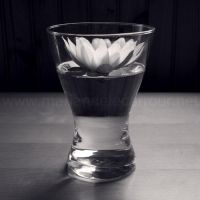 Water Lily by Aiae